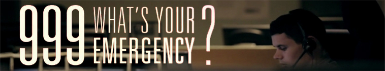 999 Whats Your Emergency S04 720p HDTV x264-BTN