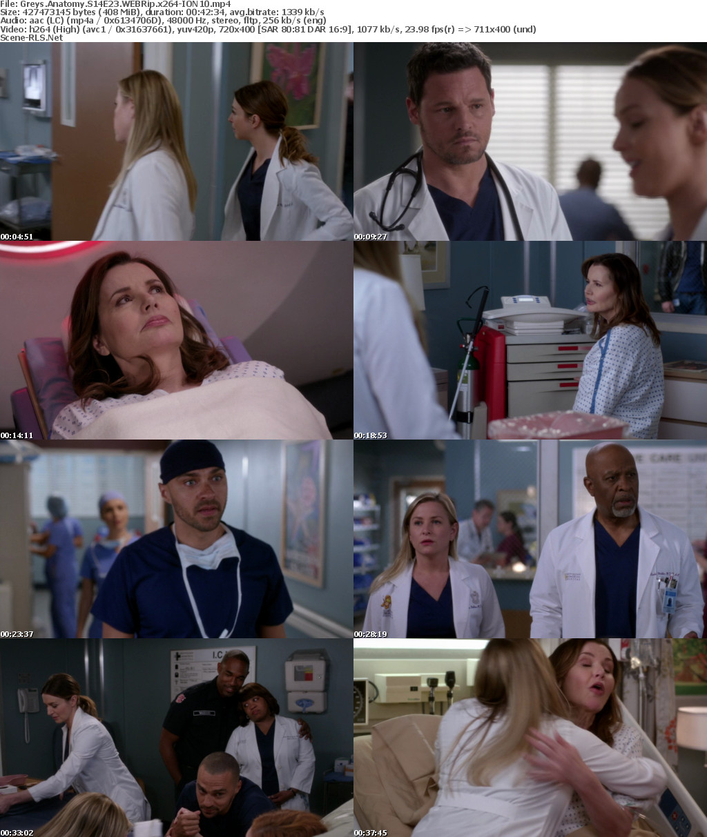 Download Greys Anatomy S14E16 Mp4 — Sceneups