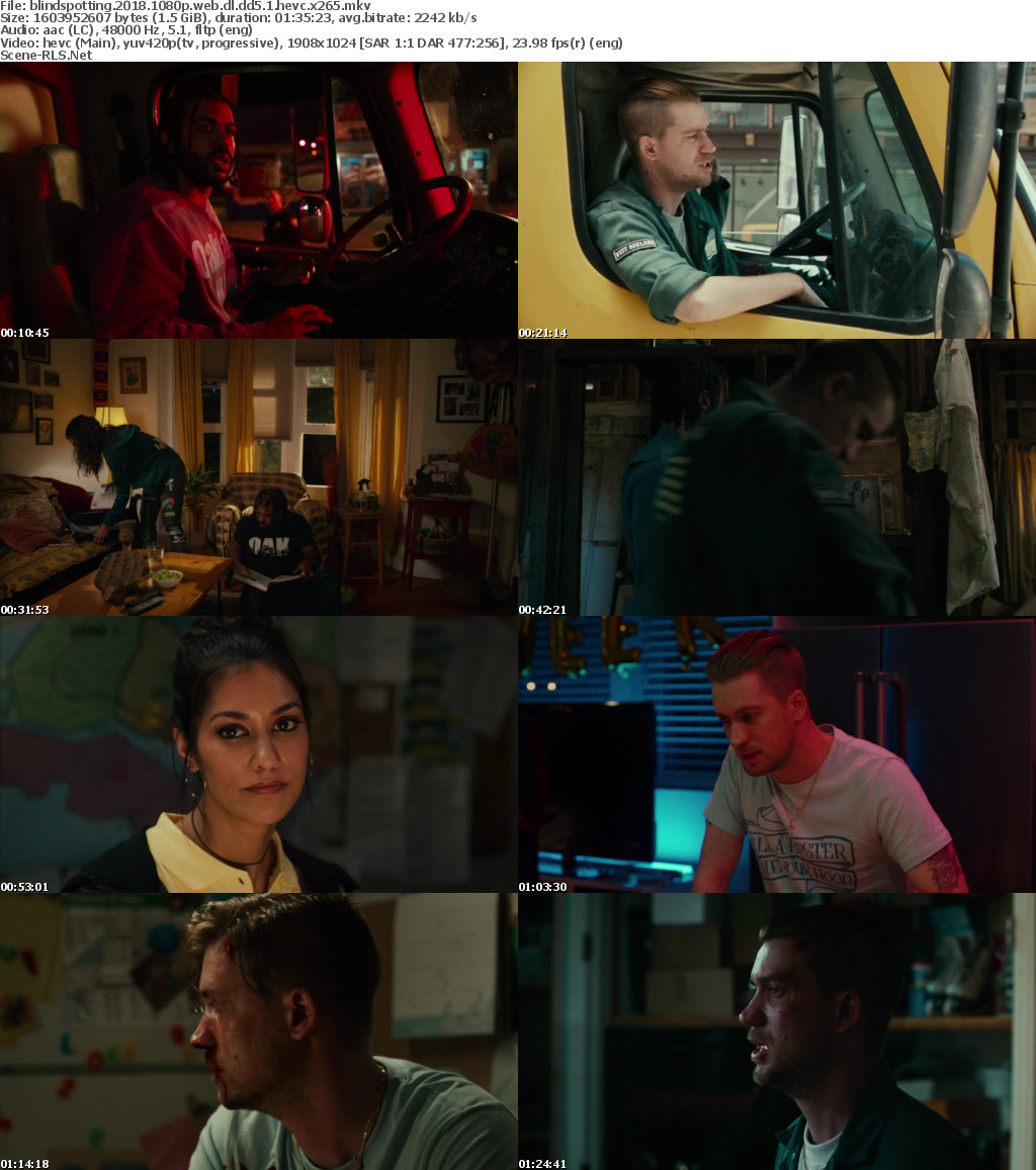 Download Blindspotting (2018) - Web-DL 720p - 1080p - 480p