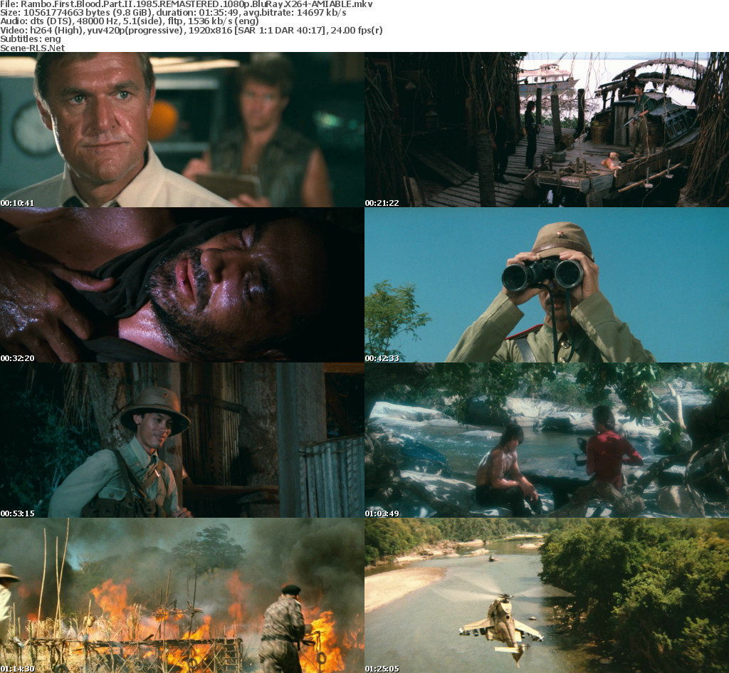 Rambo first blood movie download in hindi   Download Rambo
