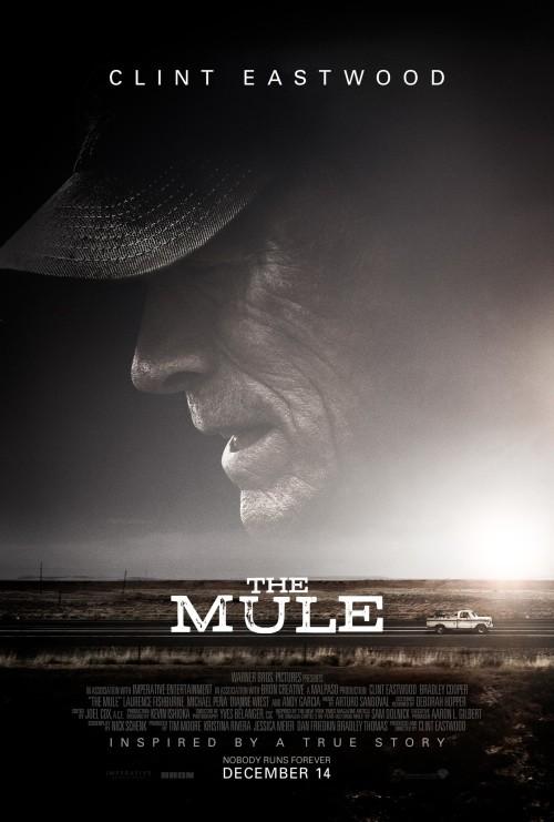 The Mule (2018) HDCAM Full English Movie 480p & 720p