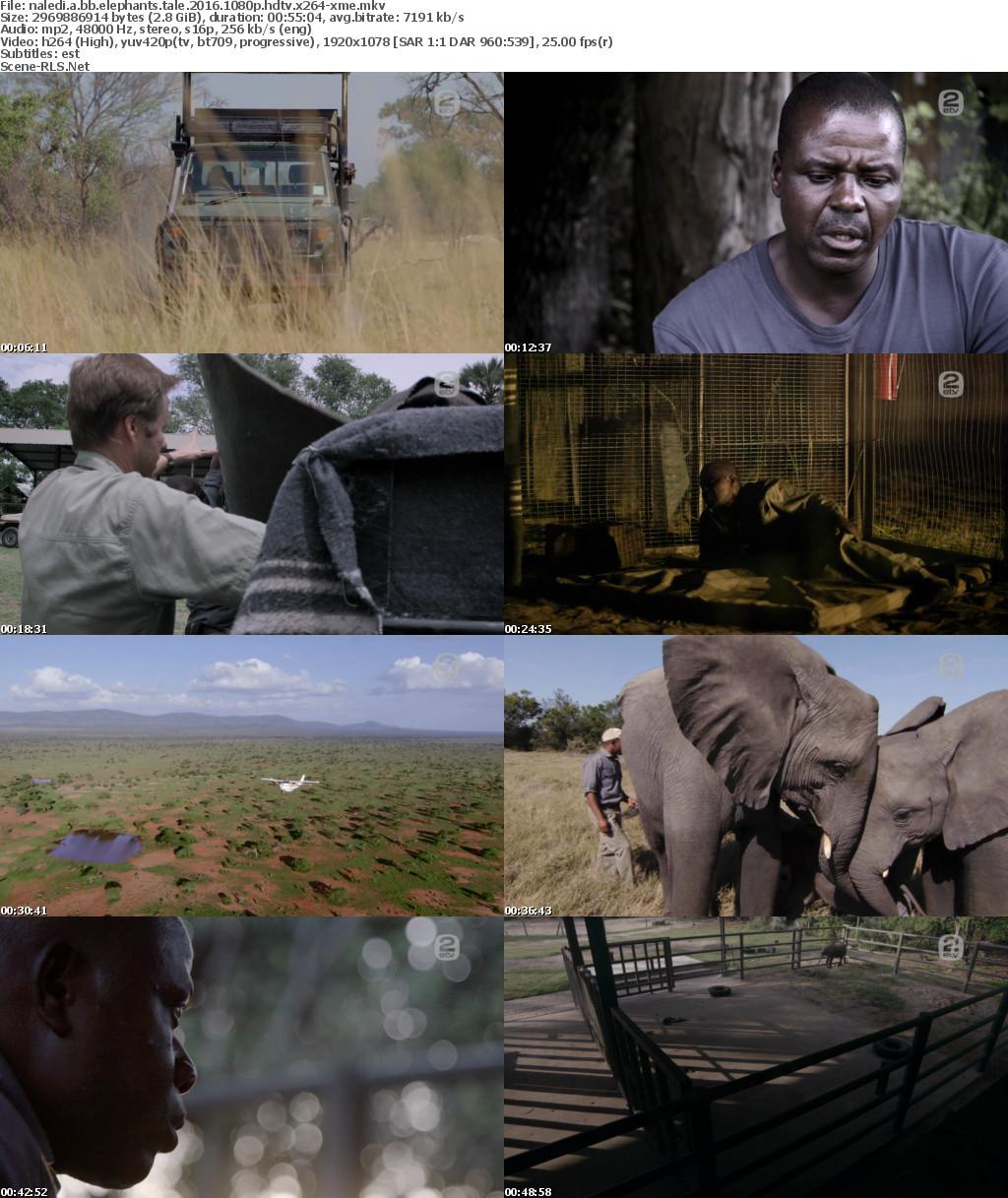 naledi a baby elephants tale download