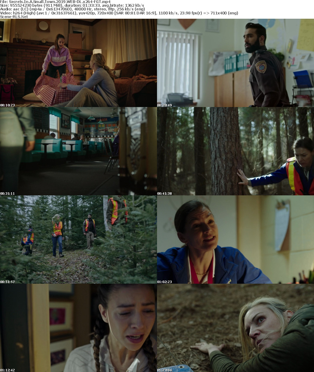 Secrets In A Small Town 2019 WEB-DL x264-FGT - Scene Release